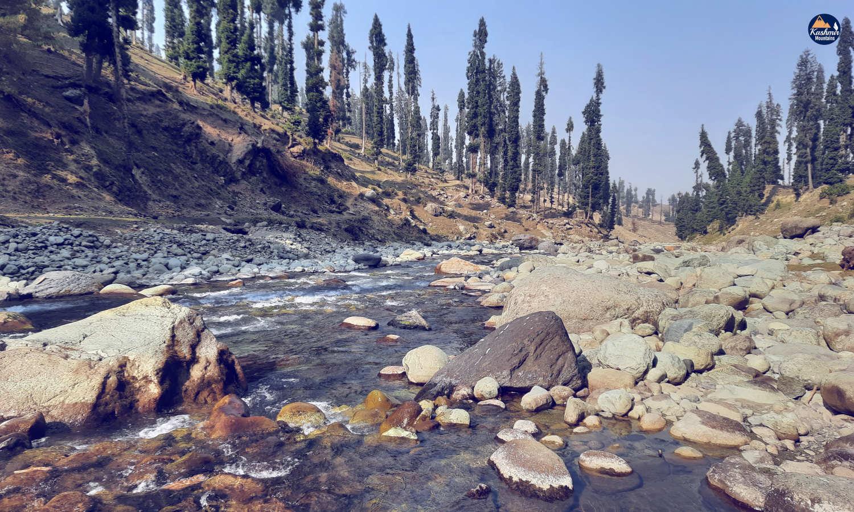 Yousmarg Doodh Ganga